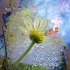 Sois en Paix album Musique mp3