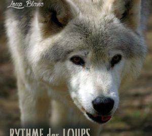 Rythme des Loups album musique